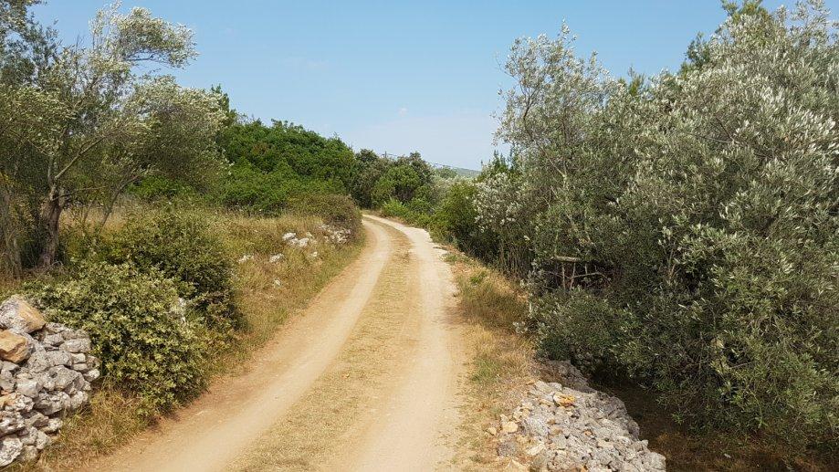Građevinsko zemljište Ždrelac Pašman, 3.900m2